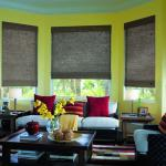 Natural Woven Blinds Familyroom
