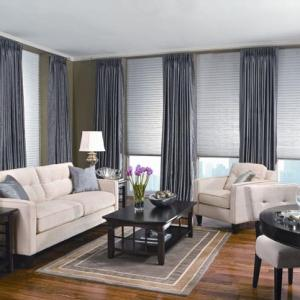 Pleated Shades Family Room