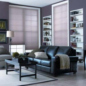 Pleated Shades Living Room