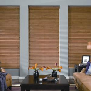 Wood & Faux Wood Blinds In The Family Room